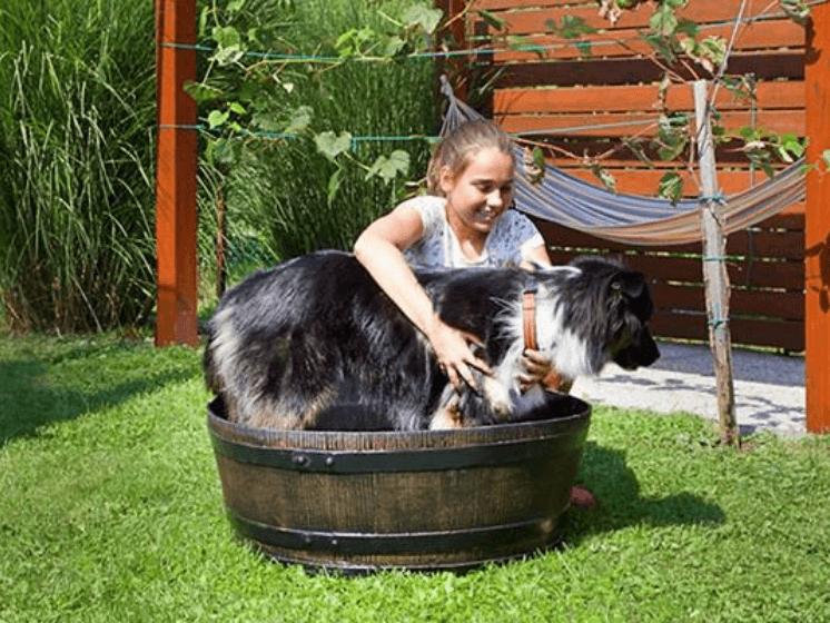 Tynnyrimiehen Tammi 350L sadevesitynnyrin jalusta toimii myös vaikka koiran paljuna
